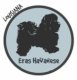 Louisiana Havanese Breeders