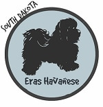 South Dakota Havanese Breeders